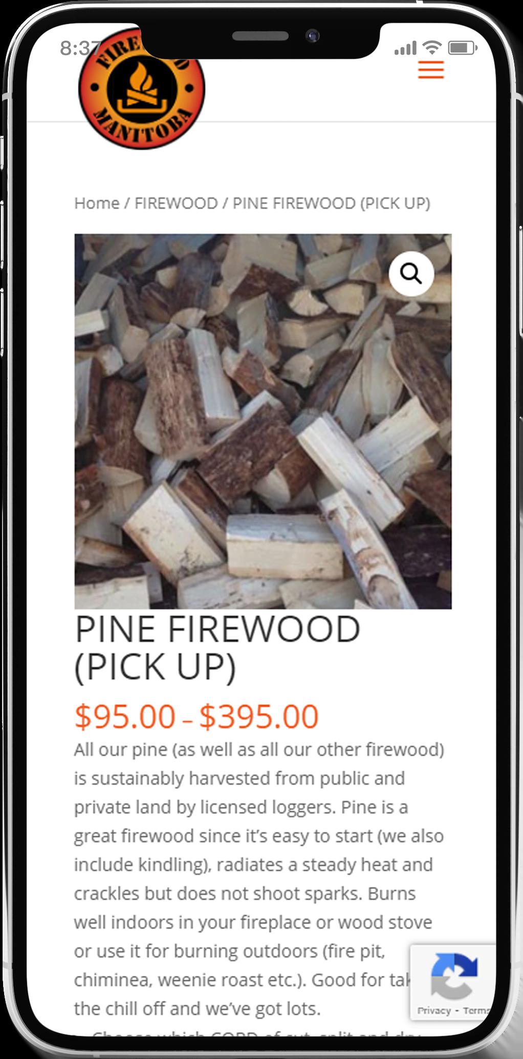 e-commerce web design in winnipeg